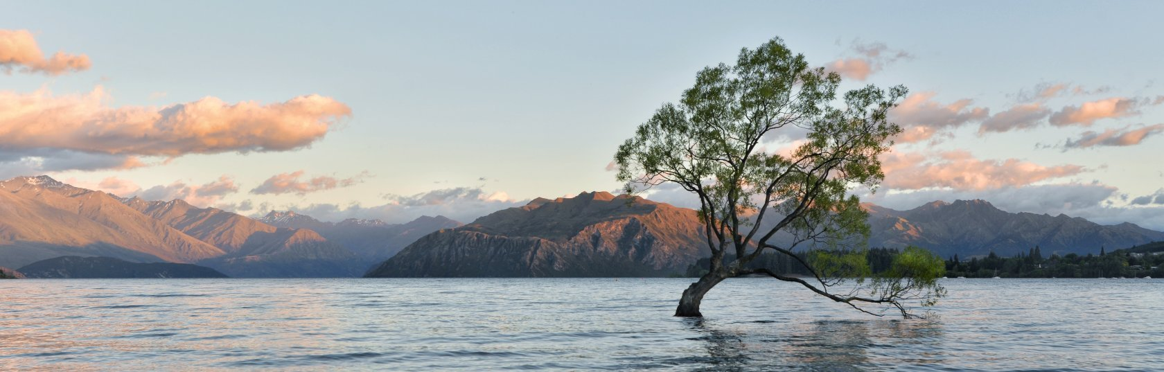 Growing the wave of sustainability in the Wanaka building sector