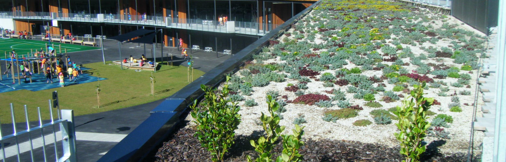 Greening our cities: from the rooftops